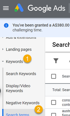 [PPC Tool 1] Is Your Google Ads Marketer Flushing Your Money Down The Toilet?